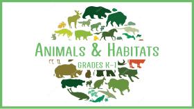 ANimals-Habitats-STEM-Class-for-Kids-grades-K-1-xsmall.png